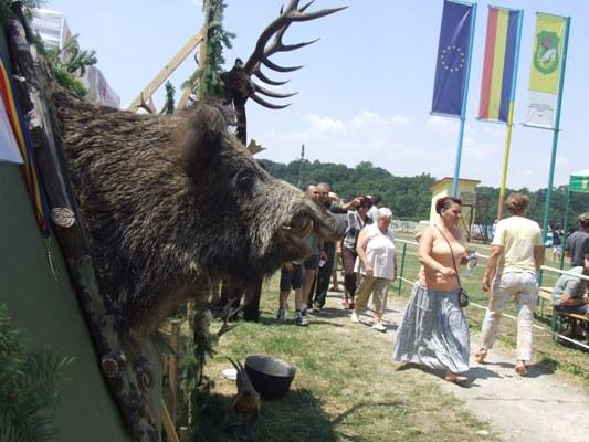 festival vanatori padurra verde DSCF9211
