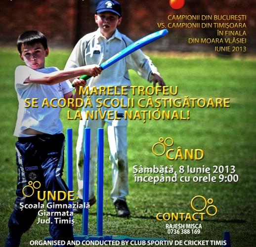 turneu de cricket