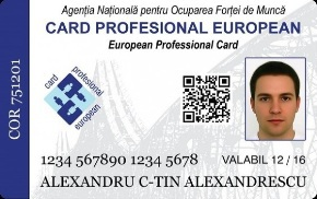 cardul profesional european