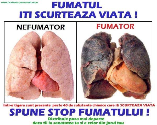 stop fumatul
