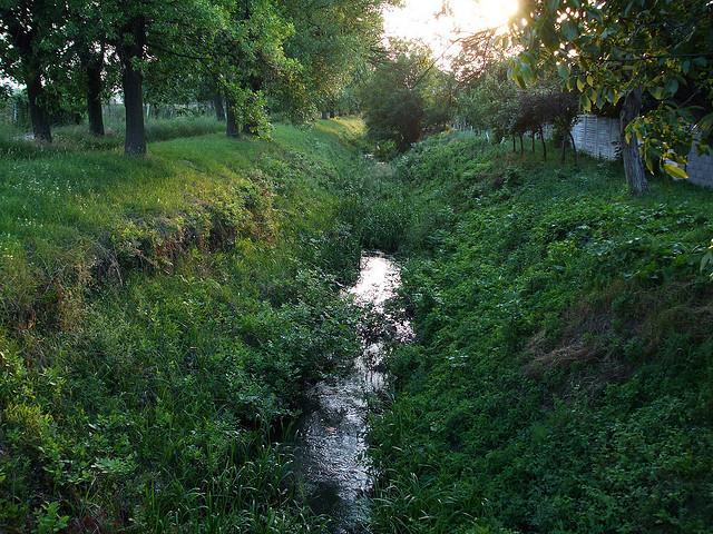 canalul Behela