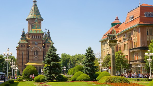 Timisoara-129815