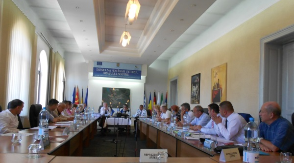 consiliul local lugoj 4