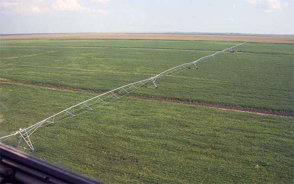 teren agricol timis