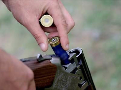 arma vanatoare