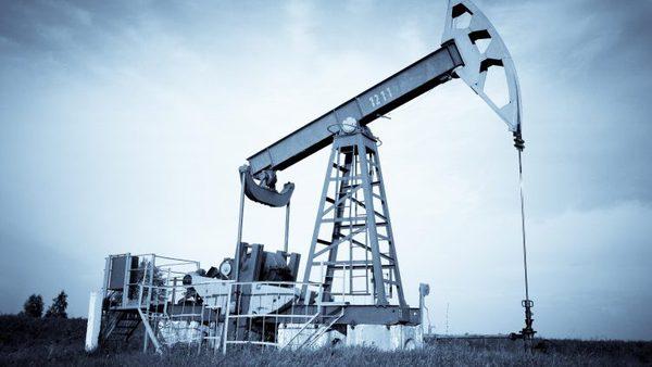 NIS Petrol 750x423