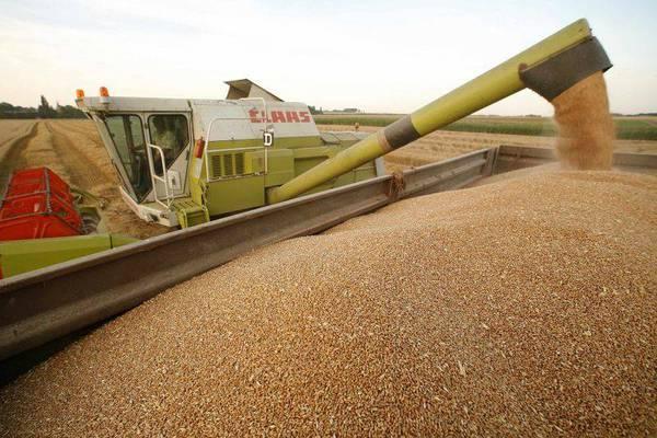 cereale piata blocaj