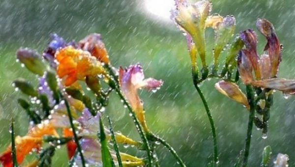 ploi primavara vremea meteo 685x320 36776800